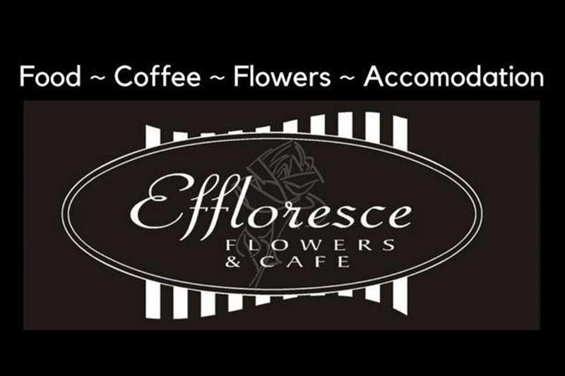 effloresce-metung